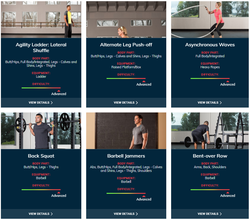 ACE Fitness Exercise Library - Advanced Level